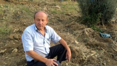 Photo of Muğla'da kafasına tomruk çarptı! Hayatını kaybetti